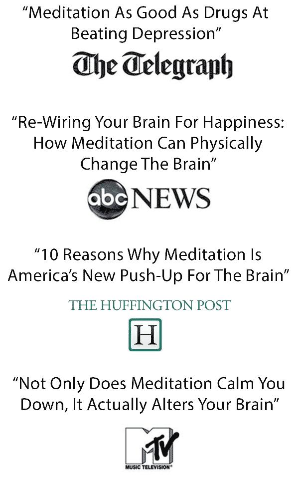 big brain and neuroplasticity